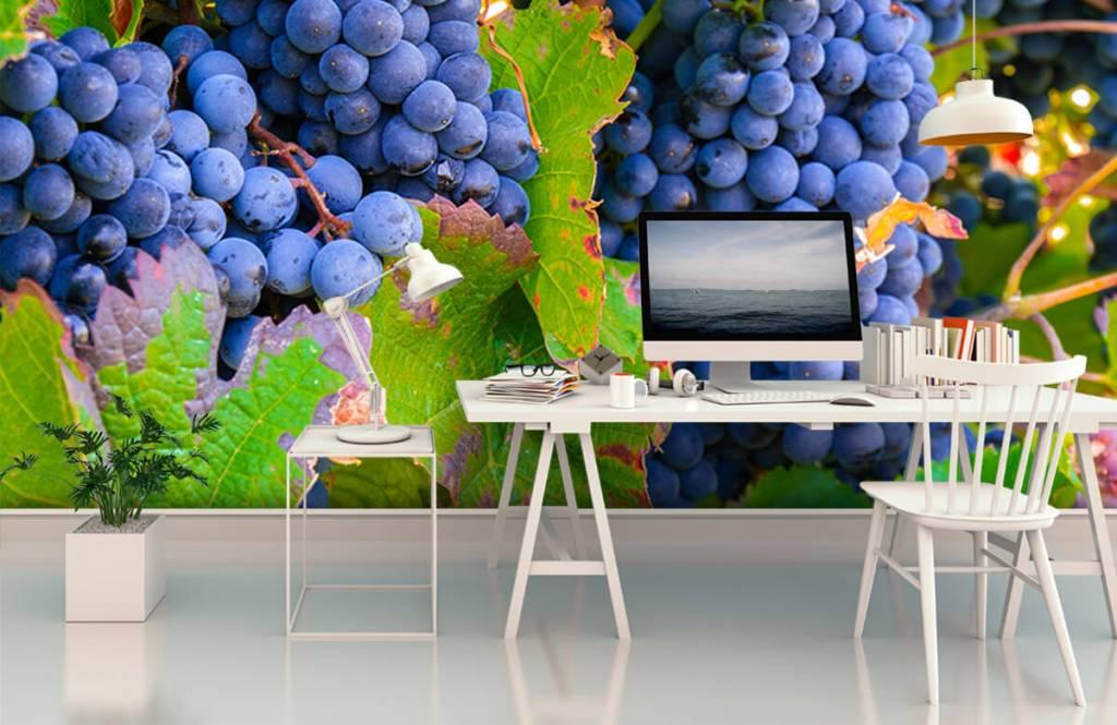 Fruit - Druiven - Kantine 2