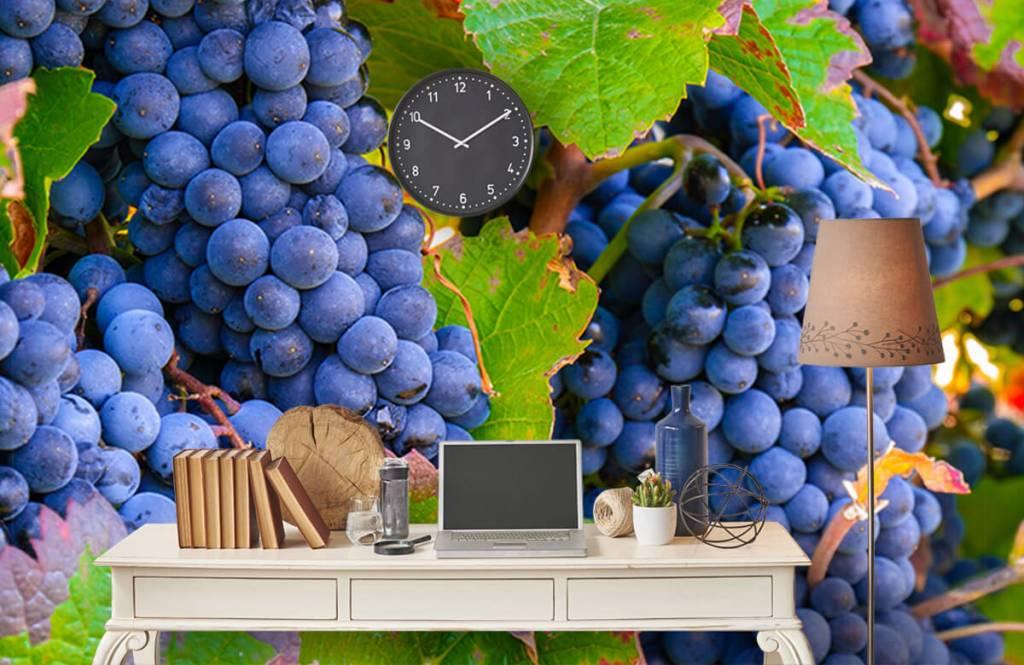 Fruit - Druiven - Kantine 3