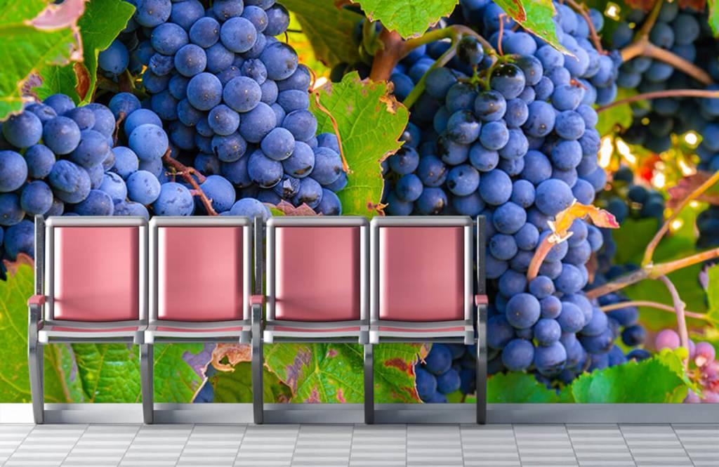 Fruit - Druiven - Kantine 4
