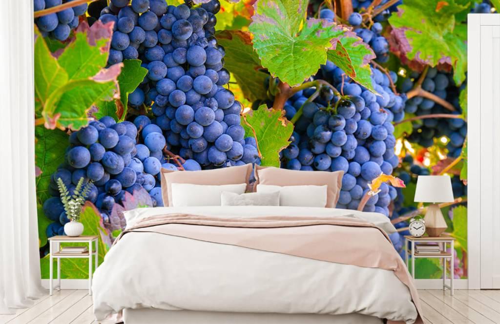Fruit - Druiven - Kantine 5