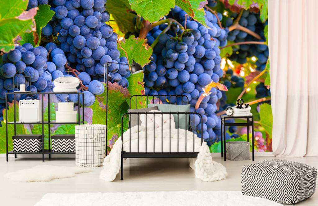 Fruit - Druiven - Kantine 6