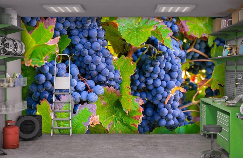 Fruit - Druiven - Kantine 7