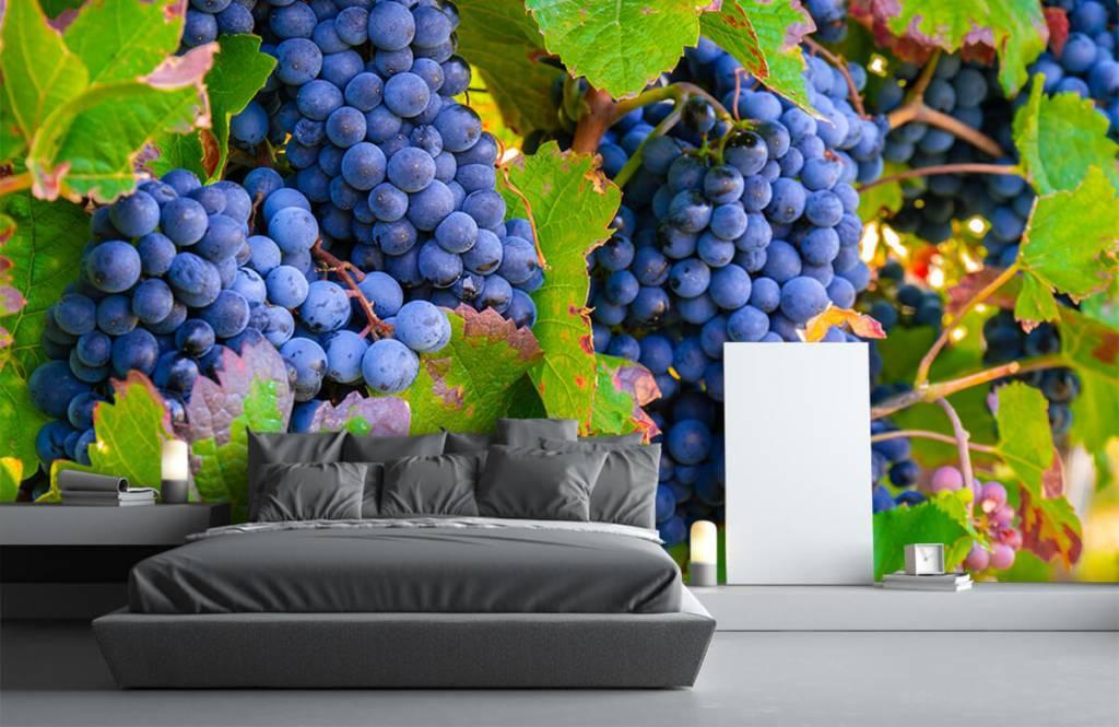 Fruit - Druiven - Kantine 8