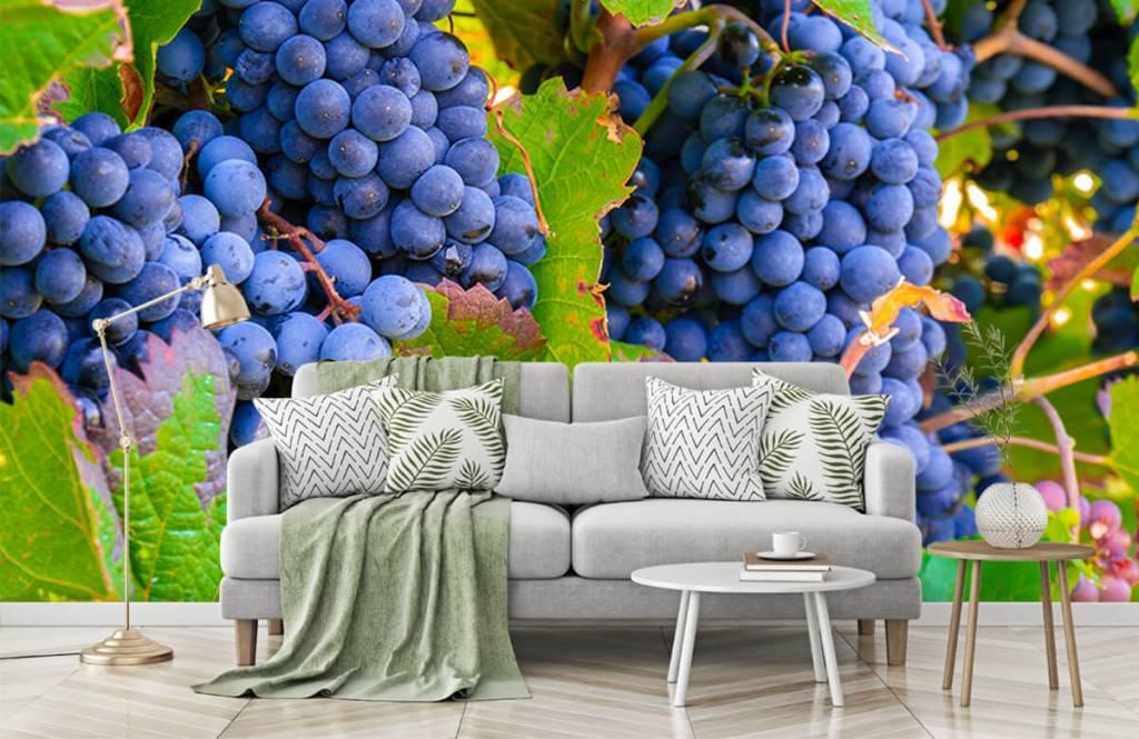 Fruit - Druiven - Kantine 9