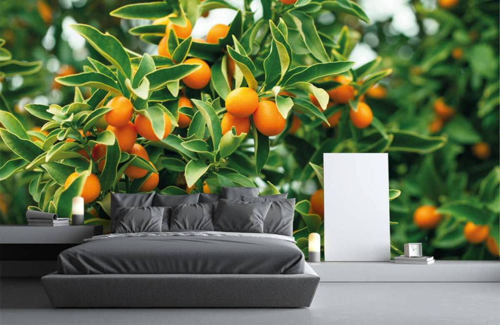 Landschap - Fruitboom - Keuken 2
