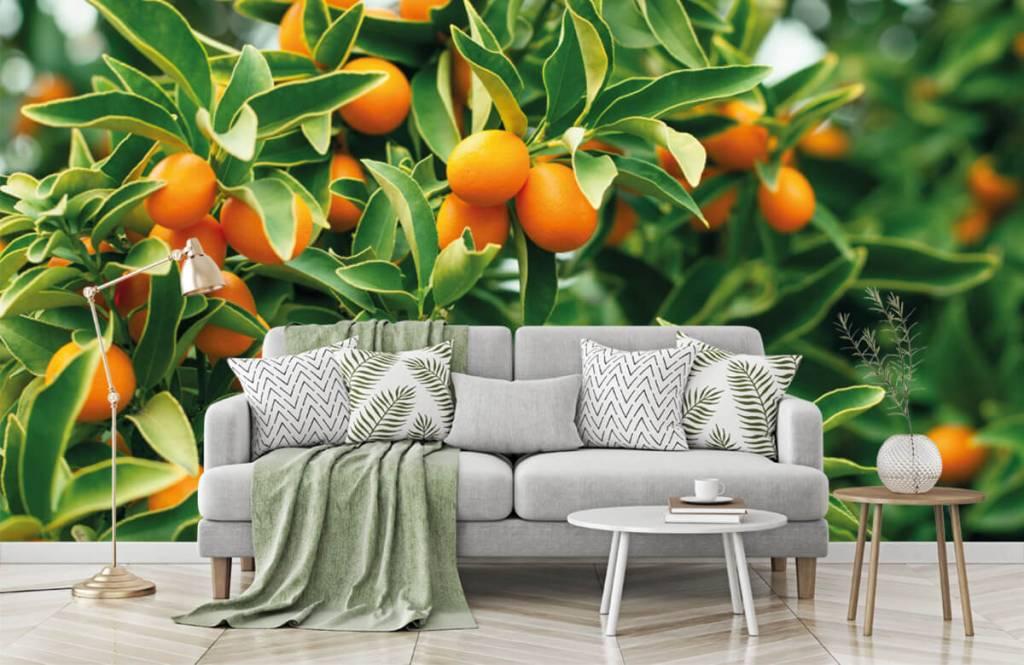 Landschap - Fruitboom - Keuken 4