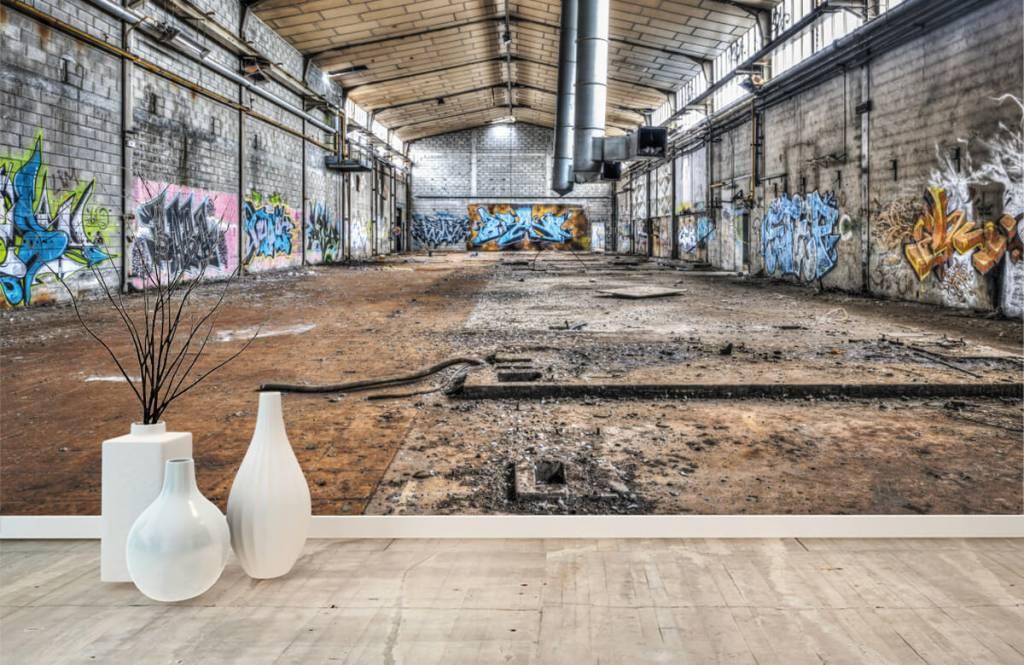 Gebouwen - Oude verlaten fabriekshal - Tienerkamer 8