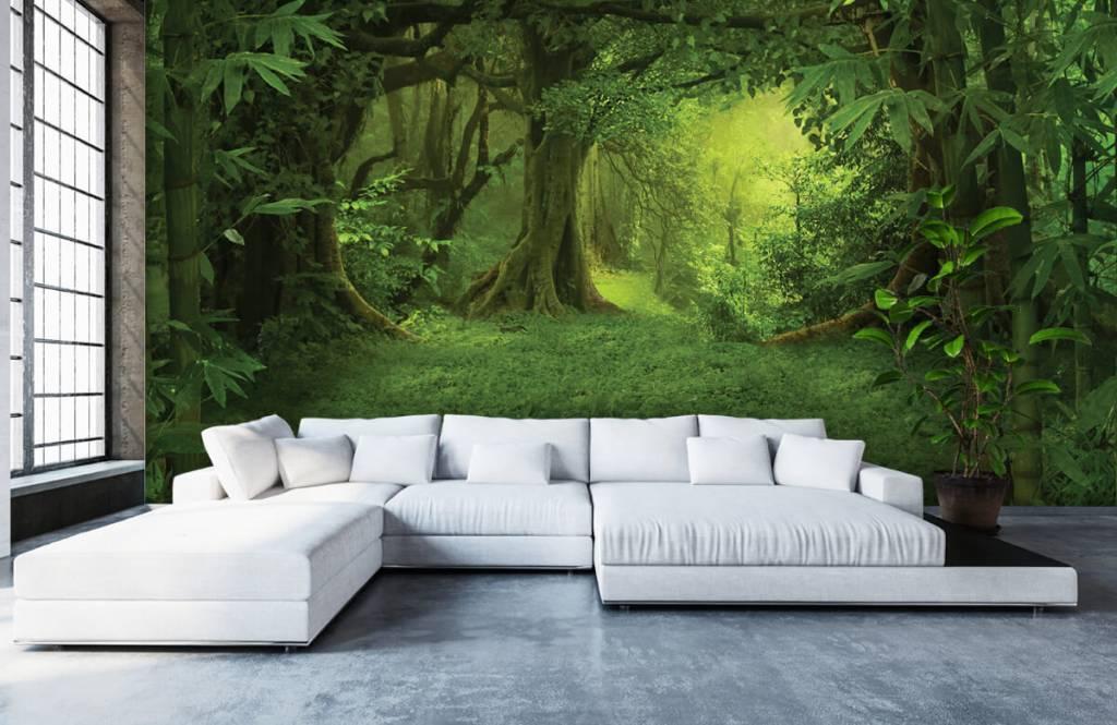 Bomen - Tropische jungle - Slaapkamer 5