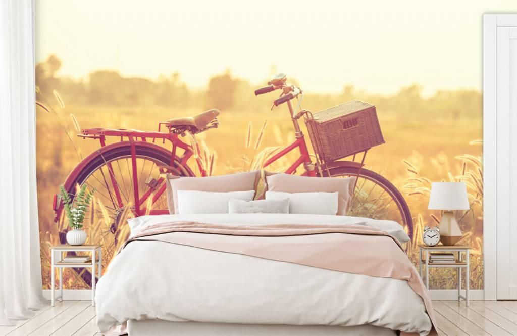 Landschap - Vintage fiets - Slaapkamer 1