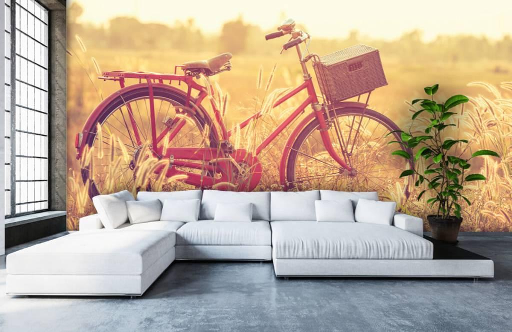 Landschap - Vintage fiets - Slaapkamer 5