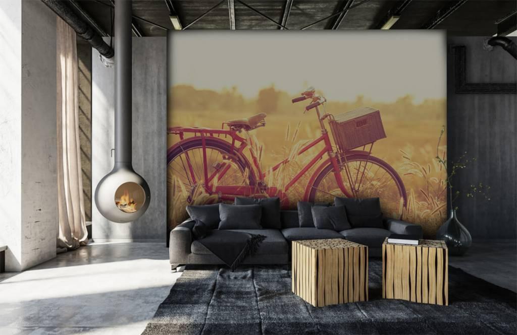 Landschap - Vintage fiets - Slaapkamer 6