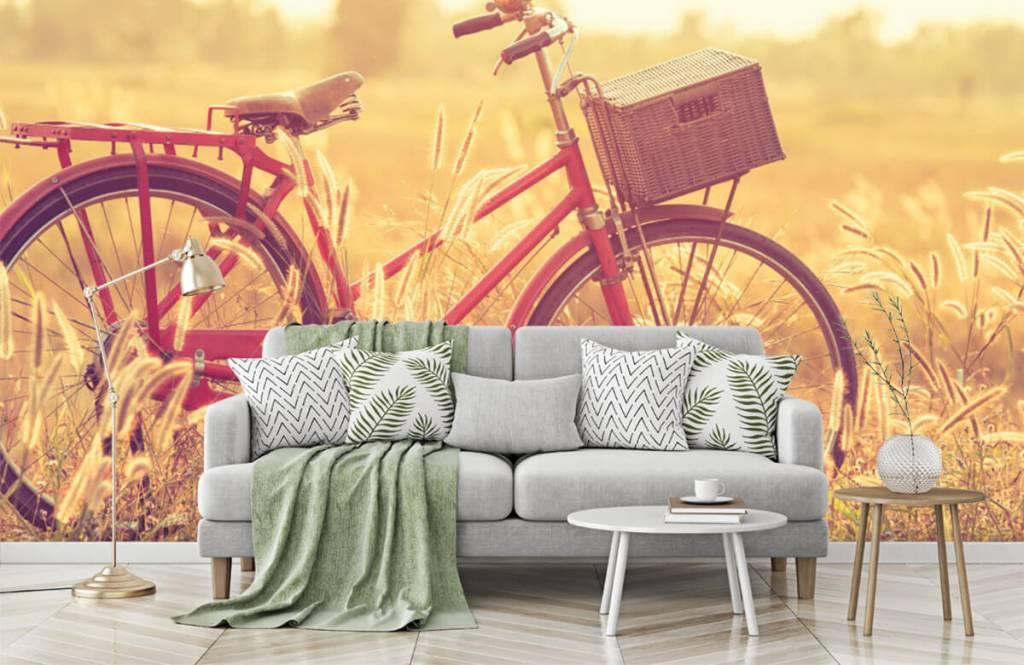 Landschap - Vintage fiets - Slaapkamer 7