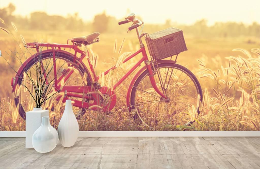 Landschap - Vintage fiets - Slaapkamer 8