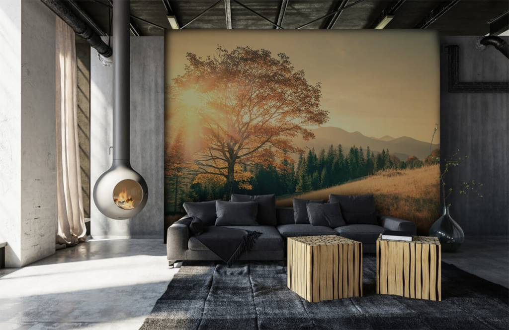 Bos behang - Zonsondergang in een vallei - Slaapkamer 1