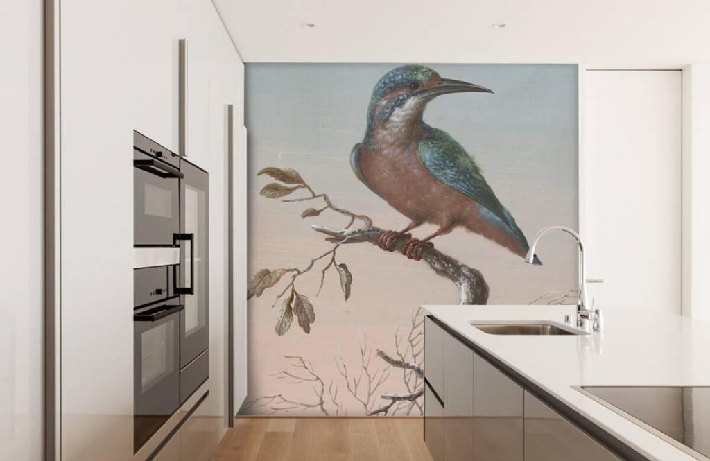 Vogel behang - IJsvogel schilderij - Keuken 1