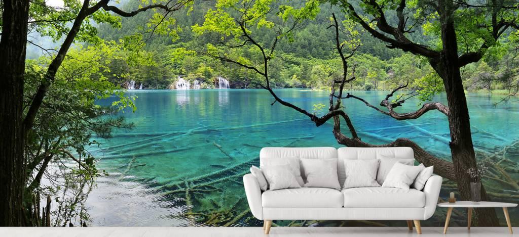 Meertjes en Wateren - Kleurrijk meer - Directie 4