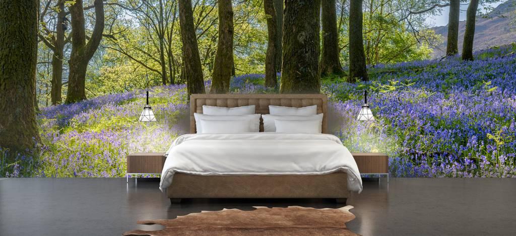 Bos behang - Lentepanorama in een bos - Ontvangstruimte 1
