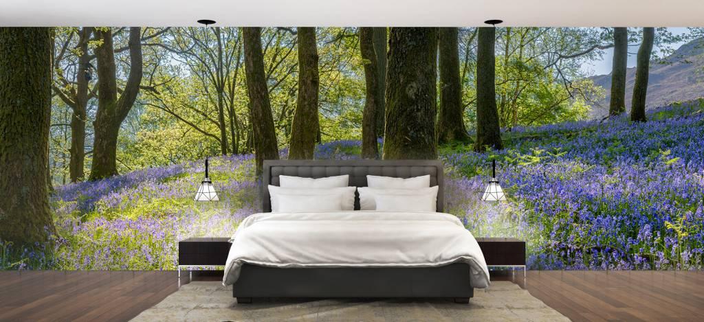 Bos behang - Lentepanorama in een bos - Ontvangstruimte 4