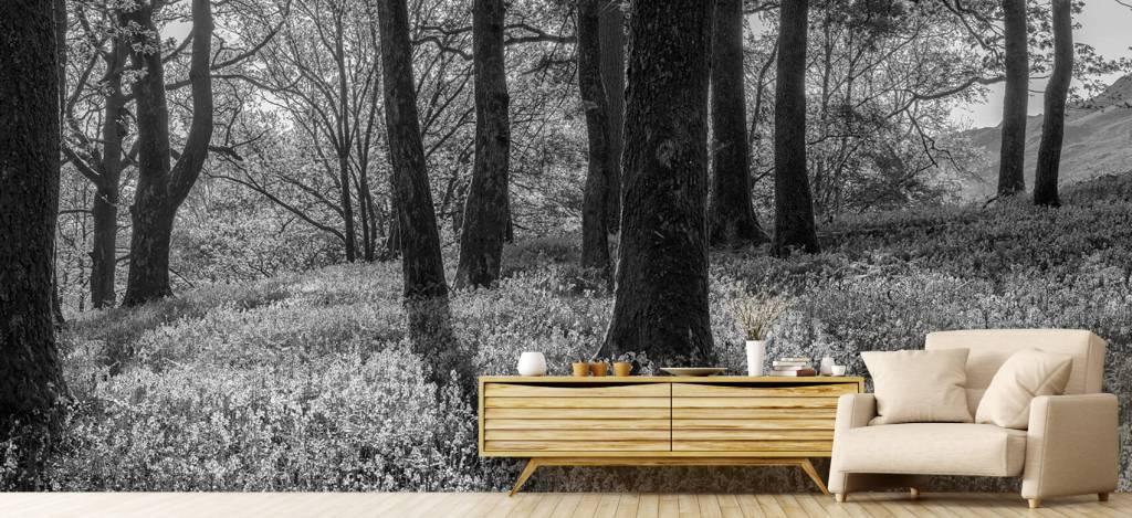 Bos behang - Lentepanorama in een bos - Ontvangstruimte 6