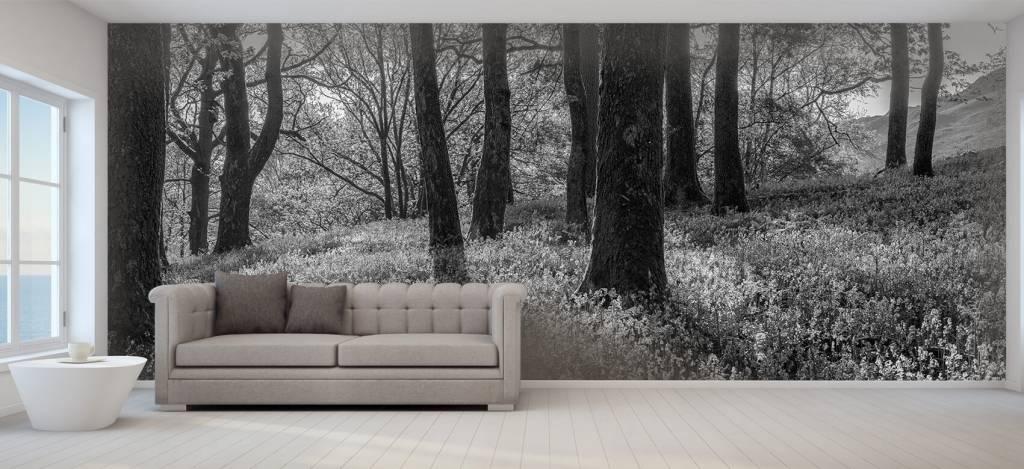 Bos behang - Lentepanorama in een bos - Ontvangstruimte 8