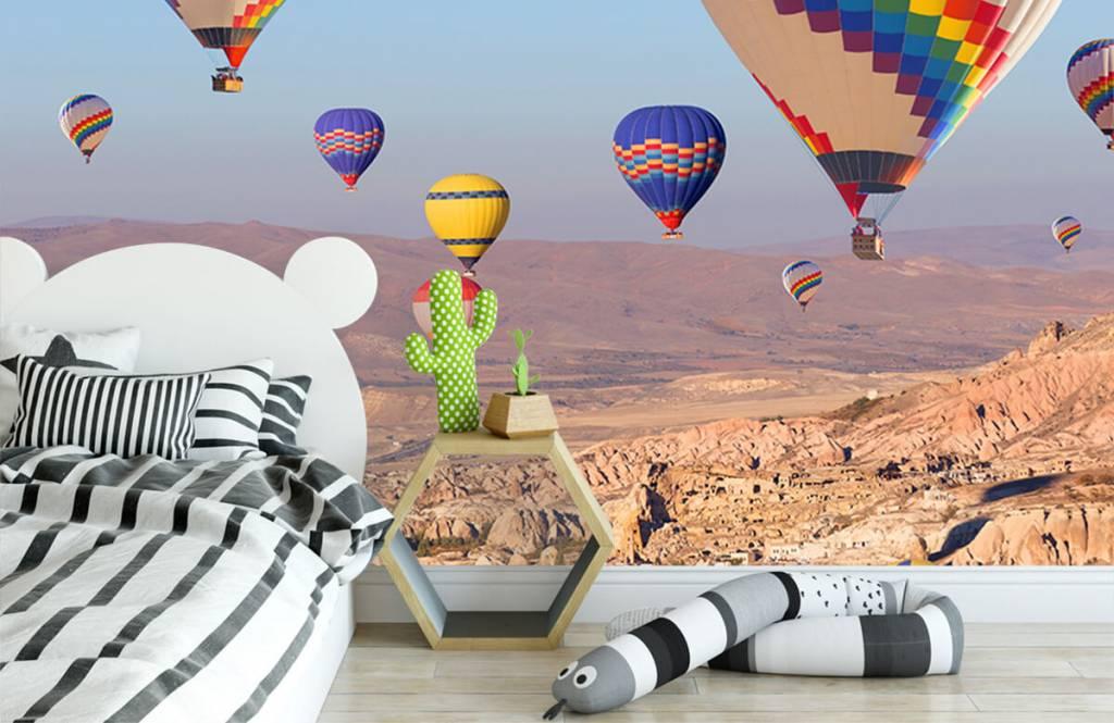 Landschap - Luchtballonnen - Ontvangstruimte 2