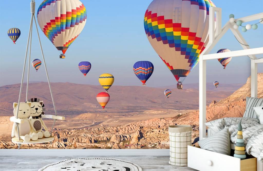 Landschap - Luchtballonnen - Ontvangstruimte 3