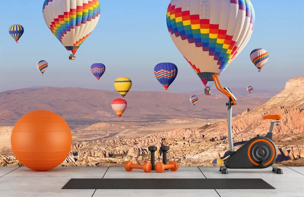 Landschap - Luchtballonnen - Ontvangstruimte 4