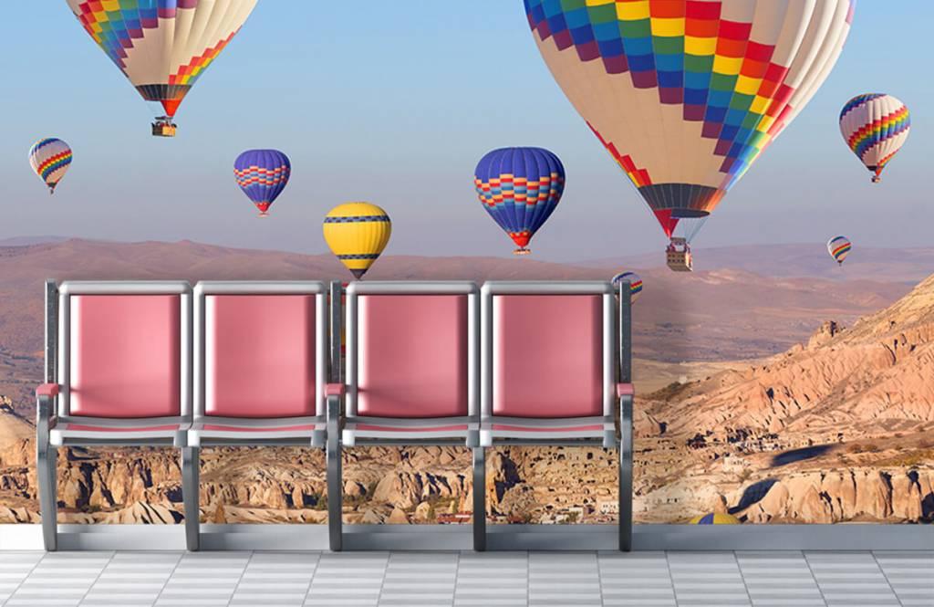Landschap - Luchtballonnen - Ontvangstruimte 5
