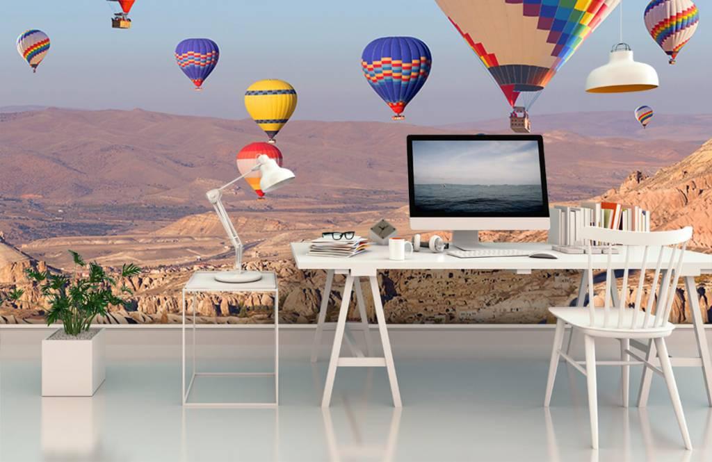 Landschap - Luchtballonnen - Ontvangstruimte 6