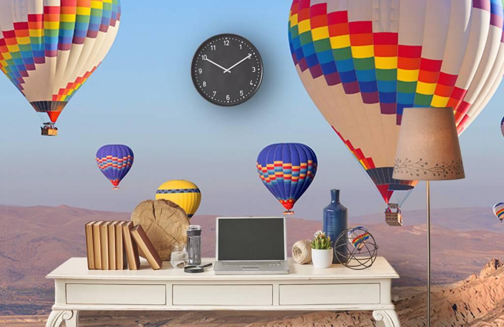 Landschap - Luchtballonnen - Ontvangstruimte 7