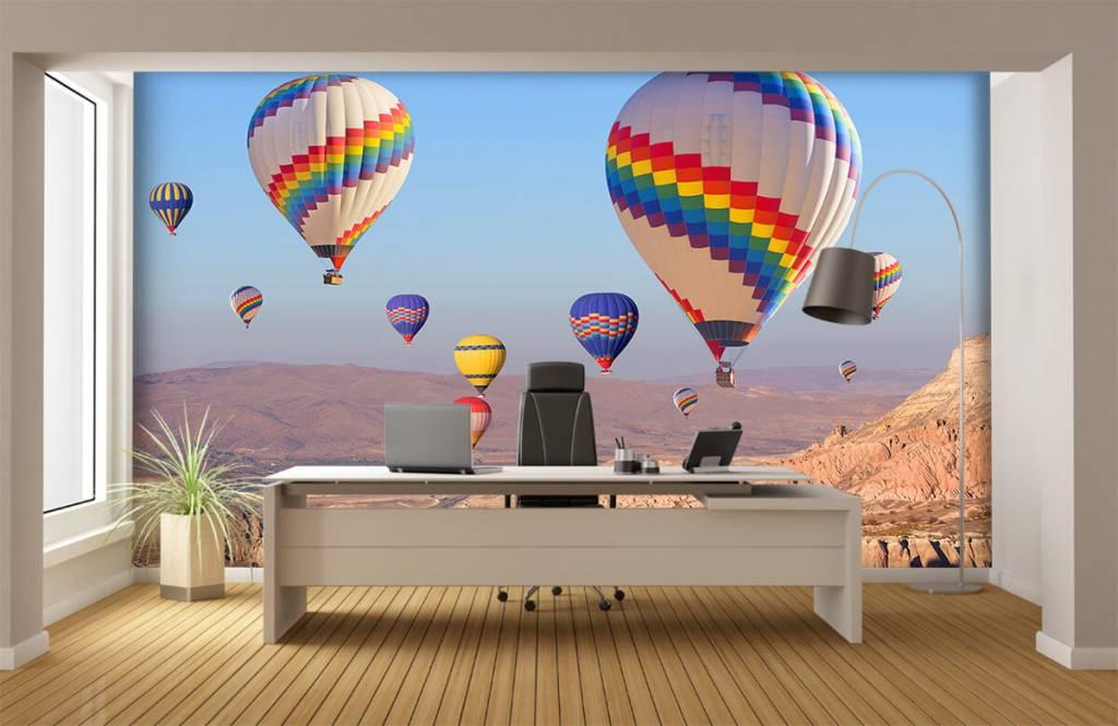 Landschap - Luchtballonnen - Ontvangstruimte 8