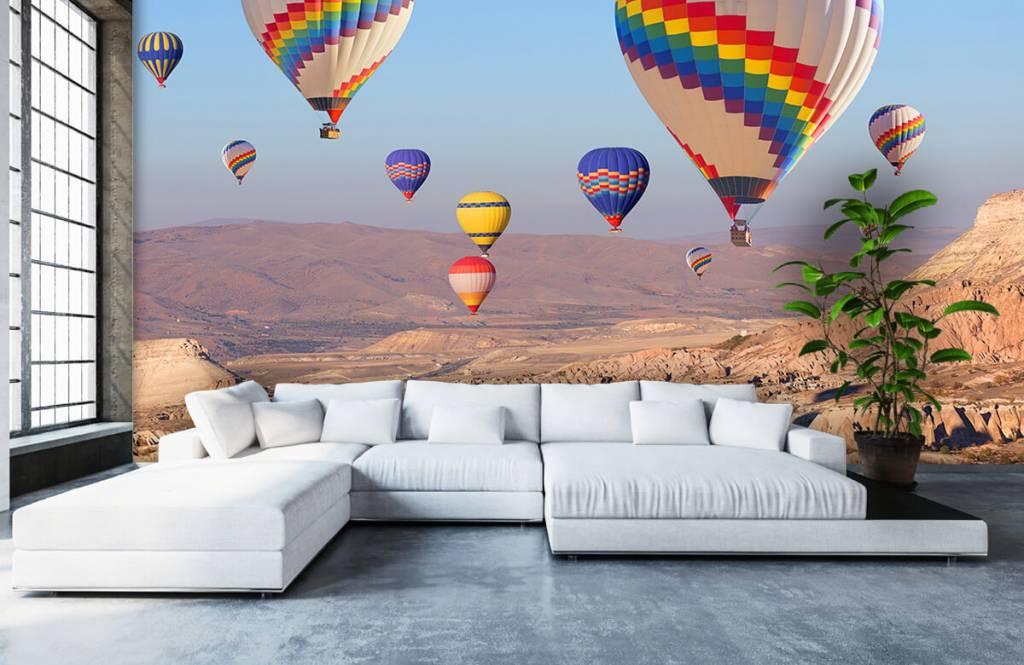 Landschap - Luchtballonnen - Ontvangstruimte 9