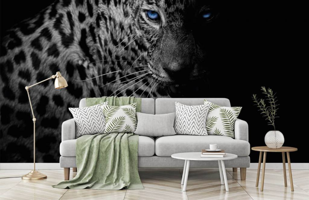 Tijgers & Leeuwen - Luipaard op zwarte achtergrond - Tienerkamer 6