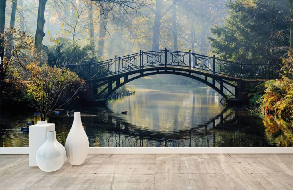 Bruggen - Oude brug in de herfst - Gang 1