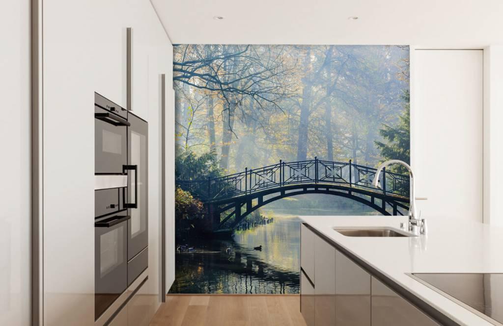 Bruggen - Oude brug in de herfst - Gang 3