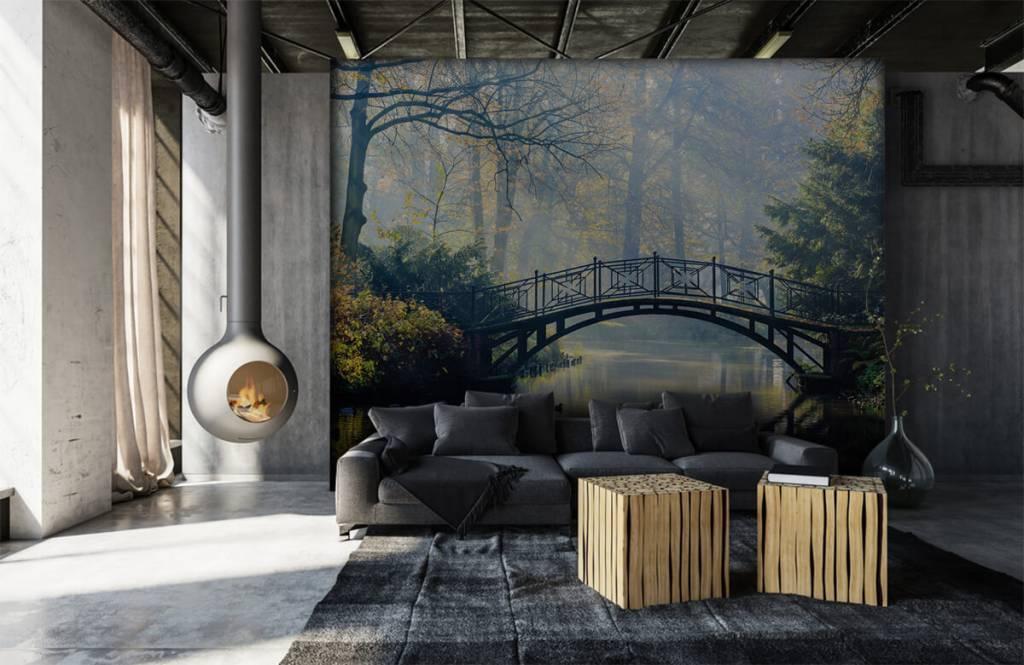 Bruggen - Oude brug in de herfst - Gang 6