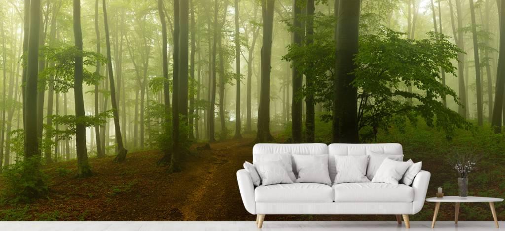 Bos behang - Pad door mistig groen bos - Kantoor 1