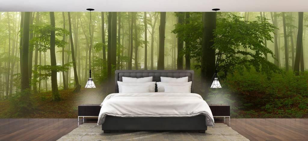 Bos behang - Pad door mistig groen bos - Kantoor 2