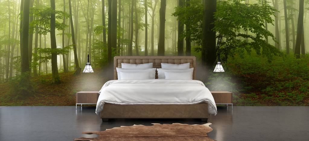 Bos behang - Pad door mistig groen bos - Kantoor 3
