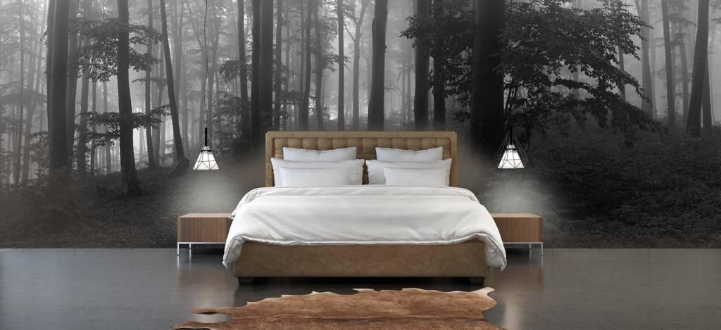 Bos behang - Pad door mistig groen bos - Kantoor 4