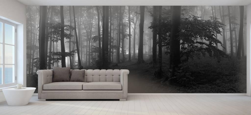 Bos behang - Pad door mistig groen bos - Kantoor 7