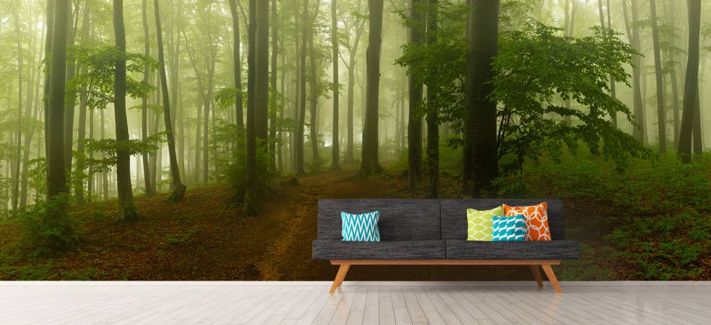 Bos behang - Pad door mistig groen bos - Kantoor 9