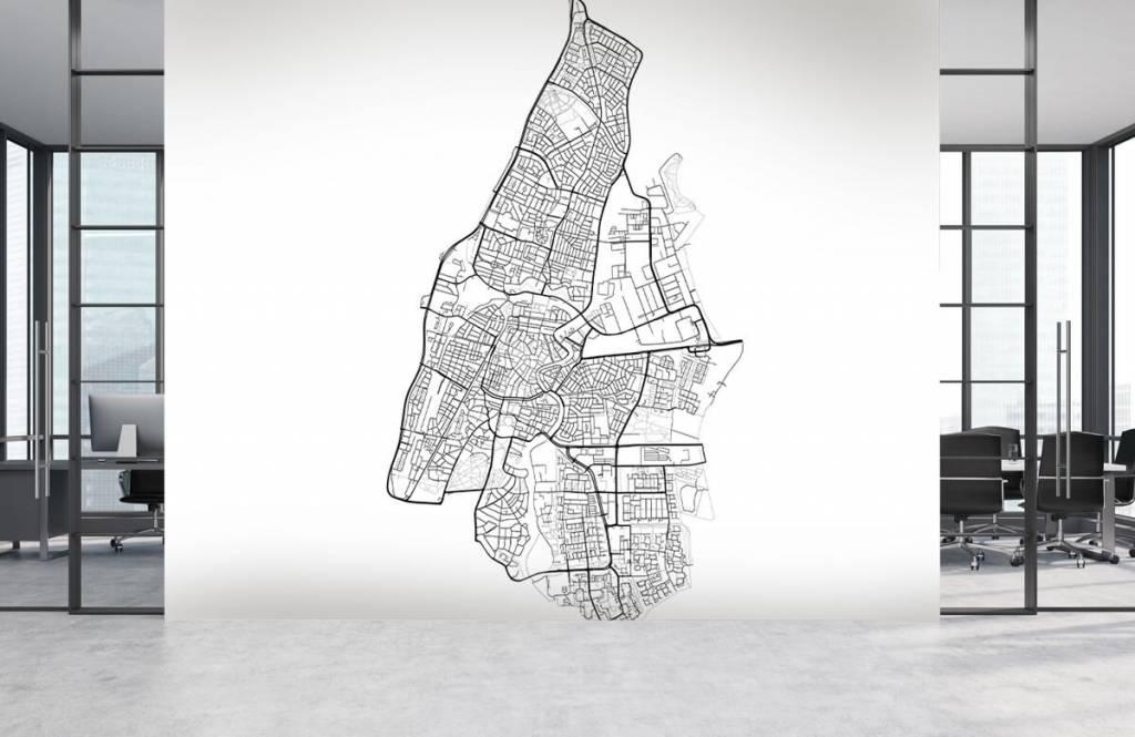 Kaarten - Plattegrond van Haarlem, wit - Ontvangstruimte 3