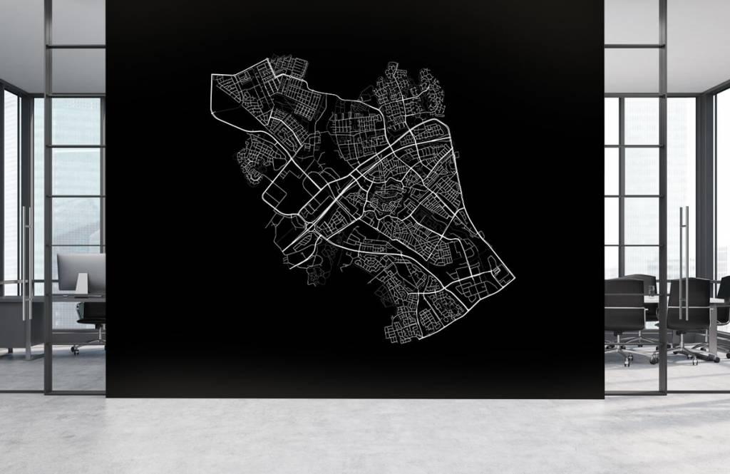 Kaarten - Plattegrond van Zwolle, zwart - Verkoopafdeling 3
