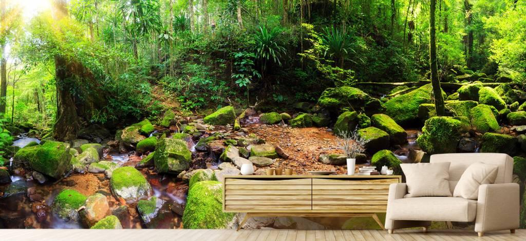 Bos behang - Regenwoud - Vergaderruimte 1