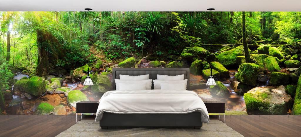 Bos behang - Regenwoud - Vergaderruimte 2