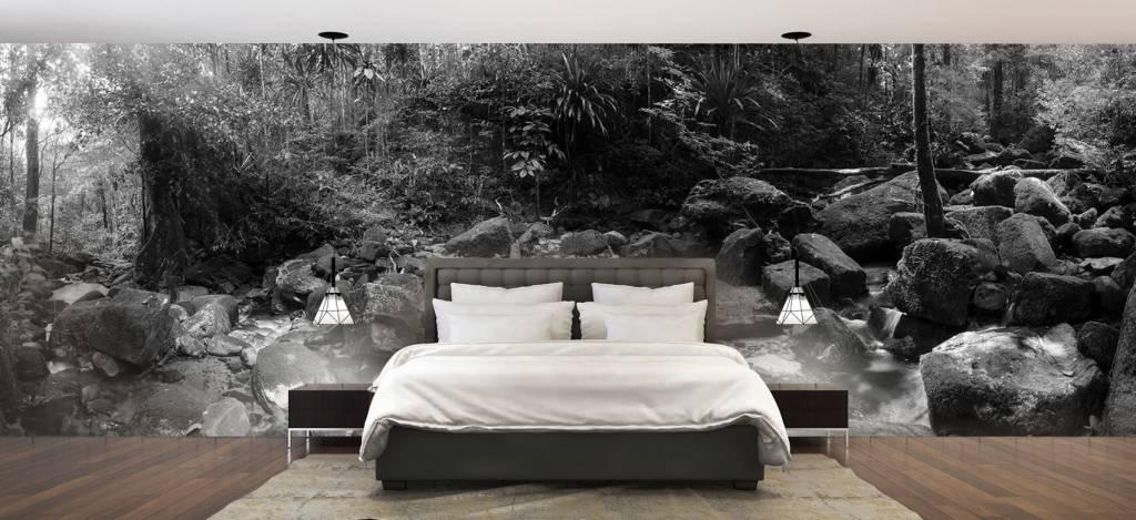 Bos behang - Regenwoud - Vergaderruimte 3