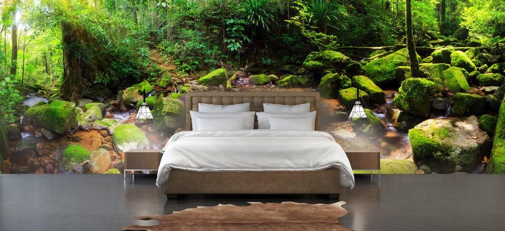 Bos behang - Regenwoud - Vergaderruimte 4