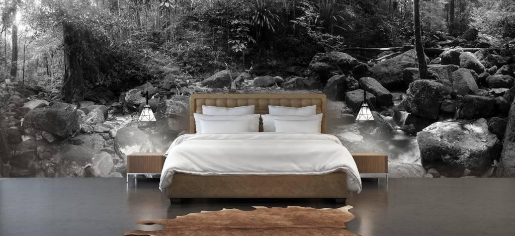 Bos behang - Regenwoud - Vergaderruimte 5