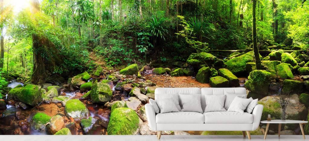 Bos behang - Regenwoud - Vergaderruimte 6